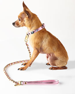 Pink Jeweled Collar with Chain Lead