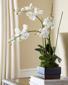White Orchid in Black Planter Faux-Floral Arrangement