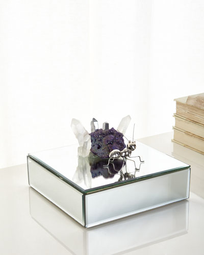 Mirrored Ant Box