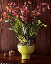 Horchow Faux Orchids