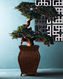 Preserved Bonsai Tree : faux florals & planters : decorative accents : decor : shop by category - Horchow Home Interiors :  accents florals decorative accents decor